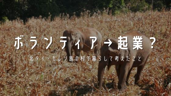 休学してタイで動物保護ボランティアをしたら起業したくなった話