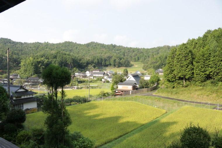 窓から見える農村の風景