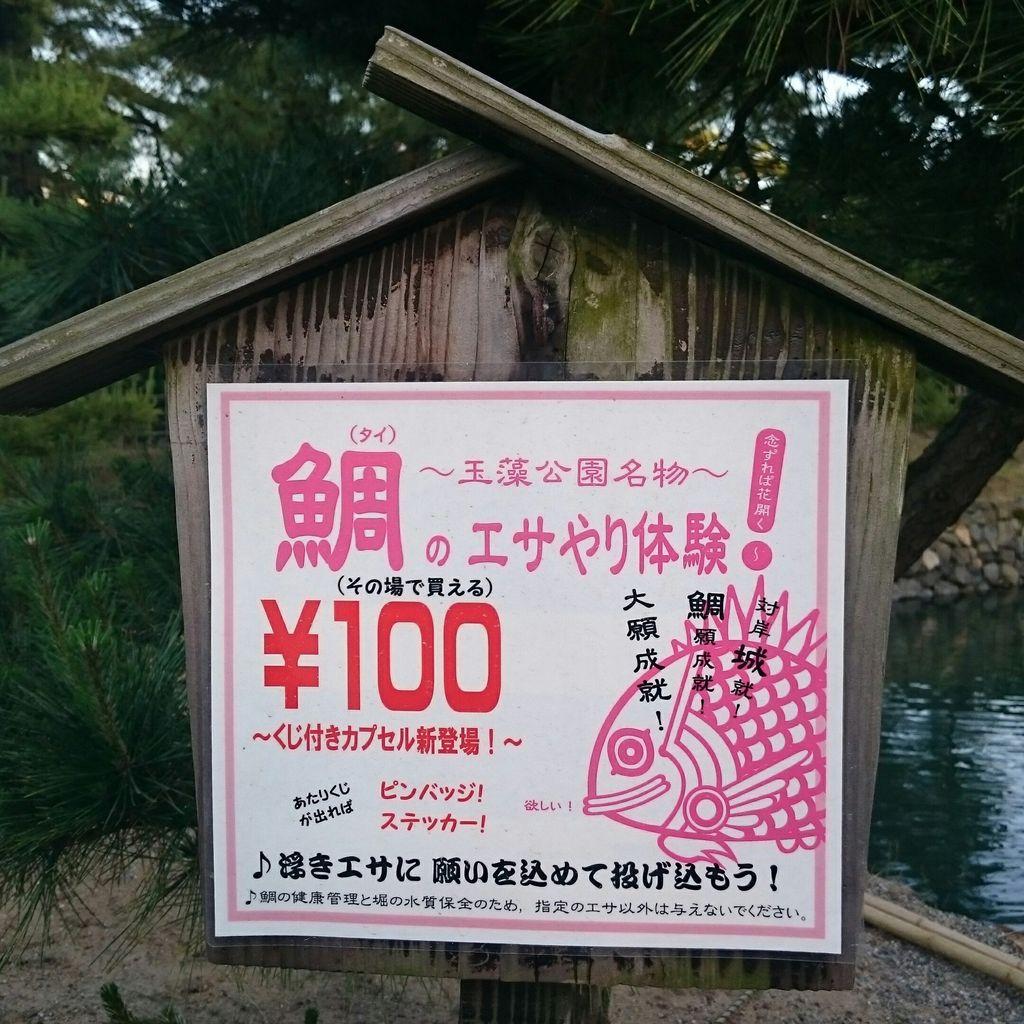 高松城 タイのえさやり