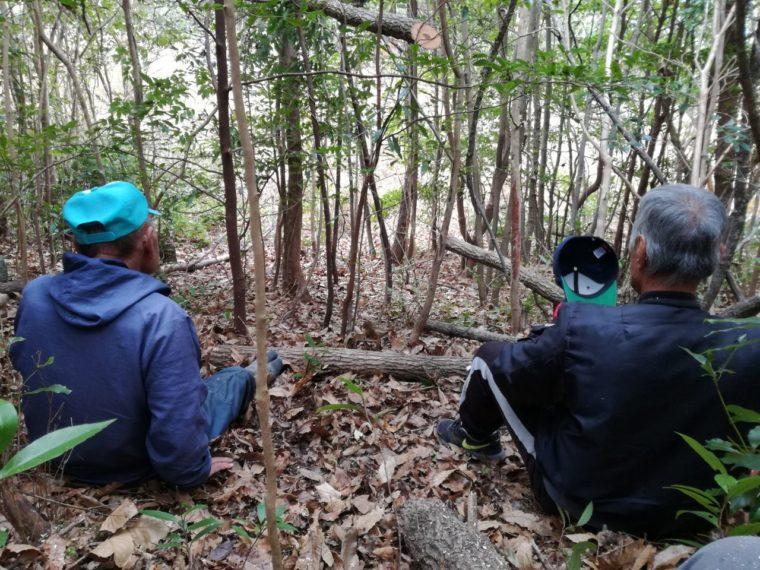 里山でクヌギを伐りながら