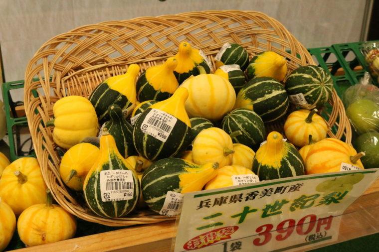 黄色と緑の小さなかわいいかぼちゃ