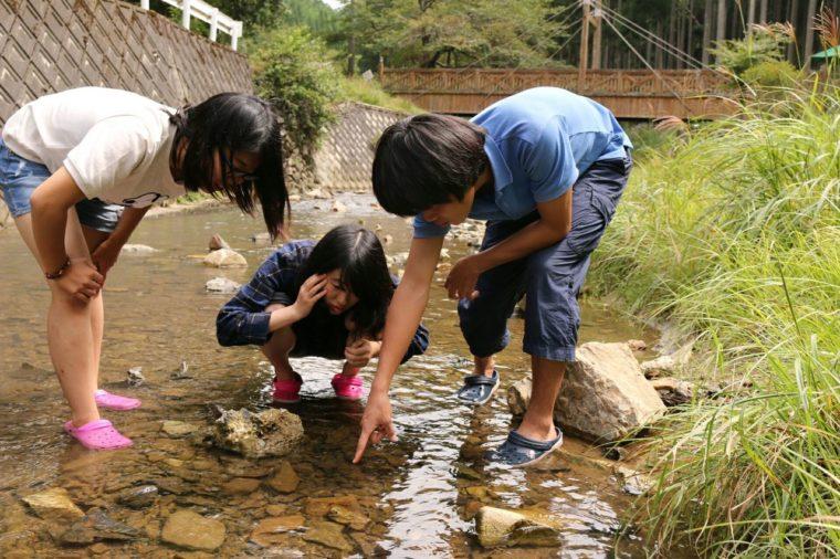 川遊びをしながら石探し