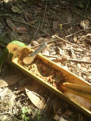 竹の器に入っているタイのスパイス