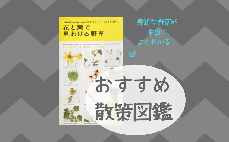 おすすめ散策図鑑(身近な野草が本当によくわかる!)