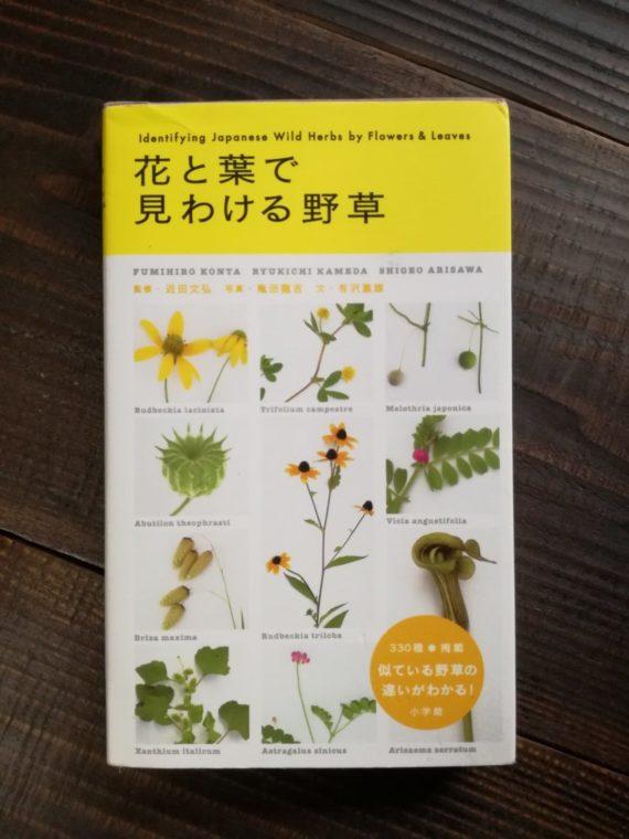 花と葉で見わける野草の表紙