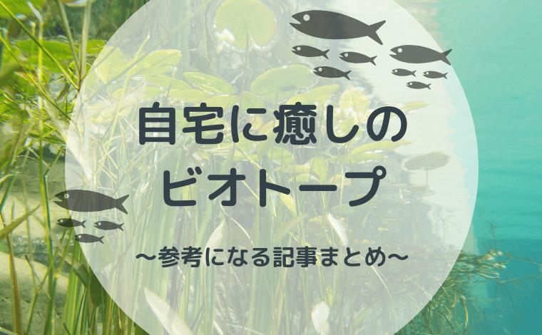 自宅に癒しのビオトープ~参考になる記事まとめ~
