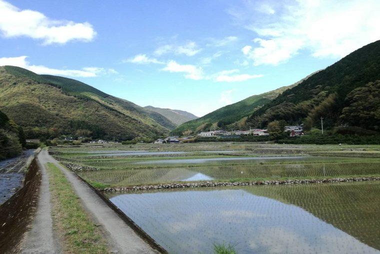日南(ひなた) 里山の風景